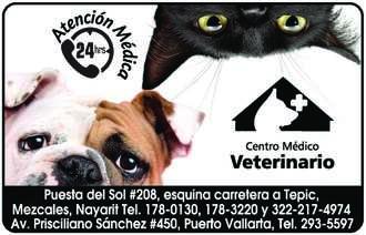 Centro medico veterinario paraiso dise%c3%b1o